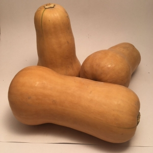 Courge Musquee Waltham Butternut