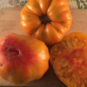 Tomate Orange Striped German